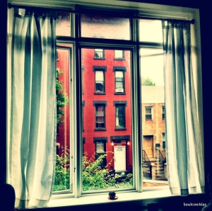 Windows are wide open as the petrichor (smell of rain) perfumes my humble abode.